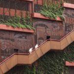 طراحی جالب فضای سبزدرپشت بام ساختمان6