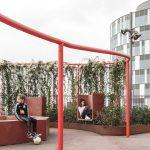 طراحی جالب فضای سبزدرپشت بام ساختمان9