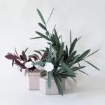 گلدان های Teumsae-7