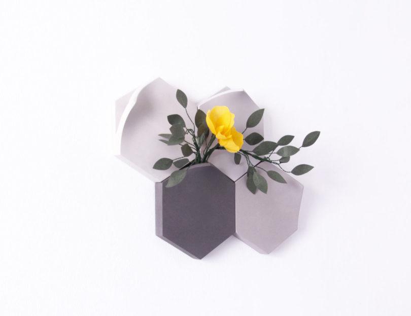 گلدان های Teumsae-1