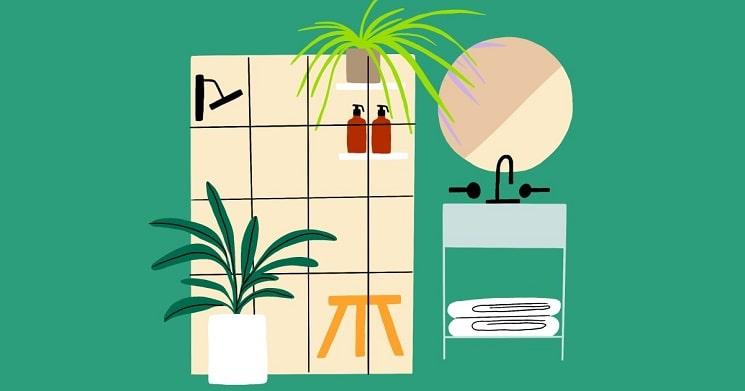 بهترین گیاهای خانگی برای حمام شما